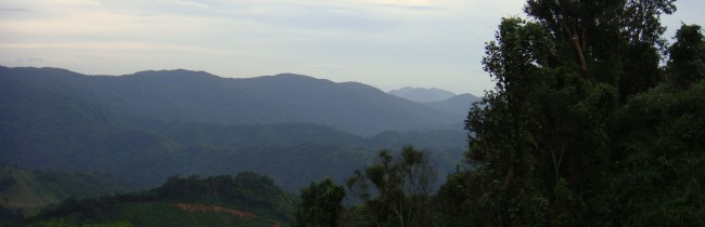 Вьетнам, дорога в Далат