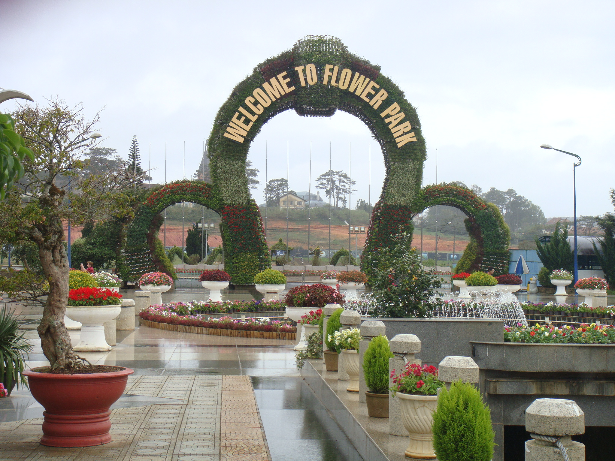 Парк цветов вьетнам фото